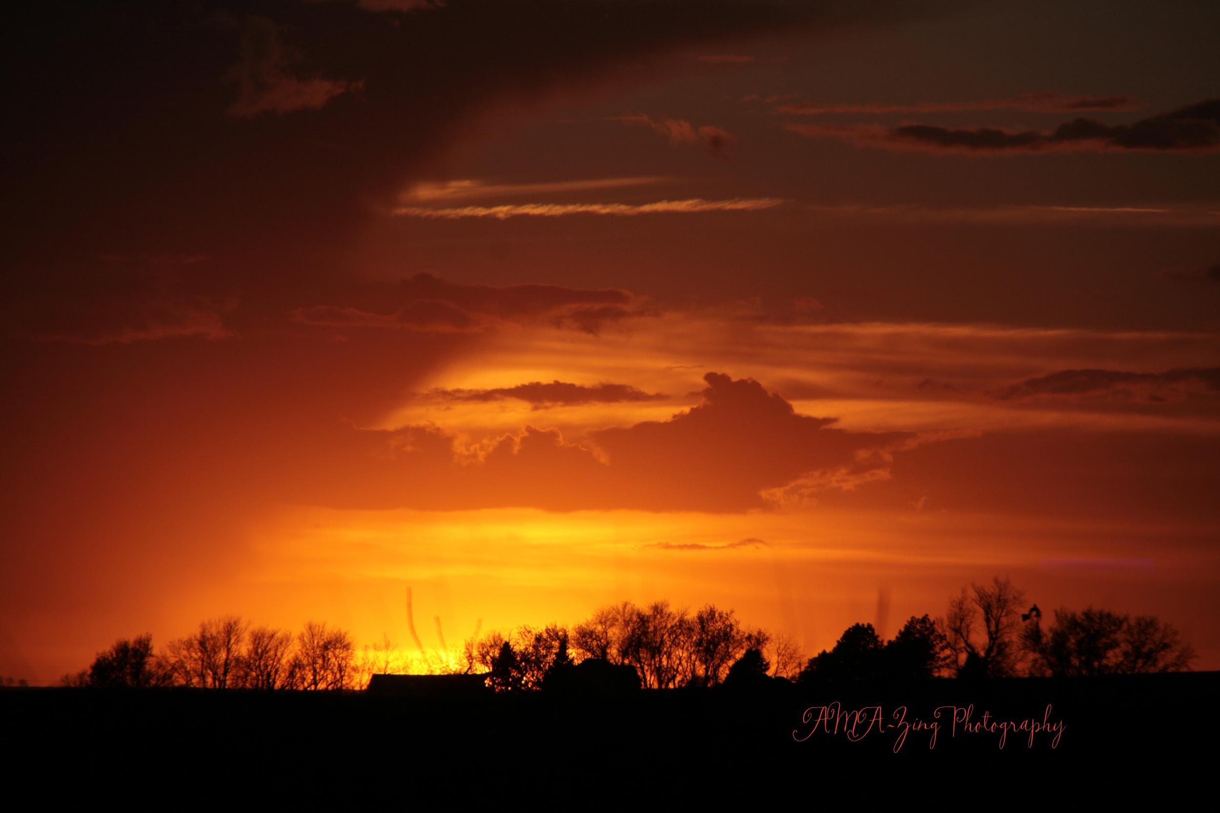 sunset at farm